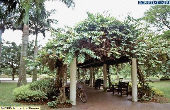 Punggol Park, Leafy Shelter